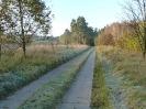 15. Schönower Herbstcross_43